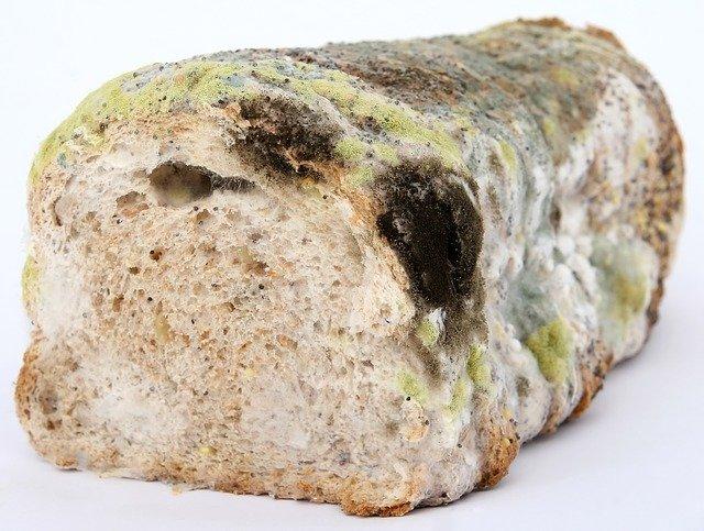 Co z tym chlebem?